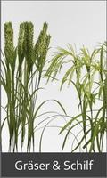 k nstliche pflanzen b ume palmen ranken b sche. Black Bedroom Furniture Sets. Home Design Ideas