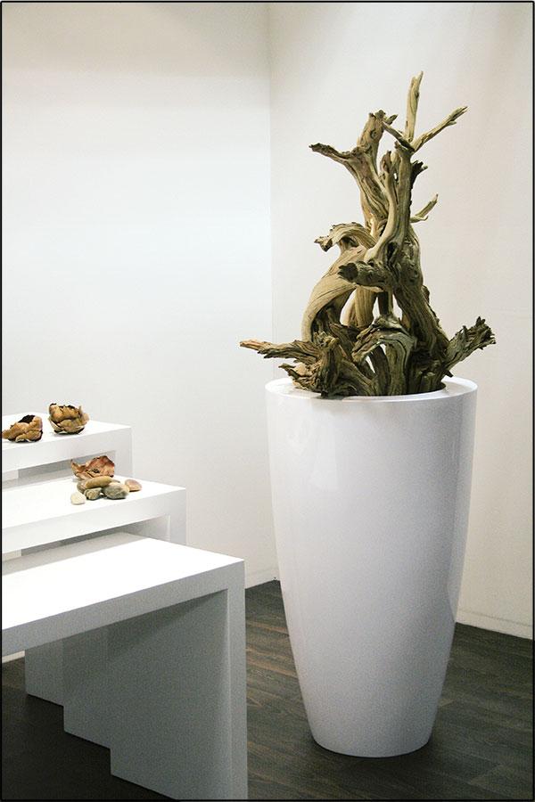 Wir Bieten Ihnen Ein Grosse Auswahl An Pflanzgefassen Und Vasen In